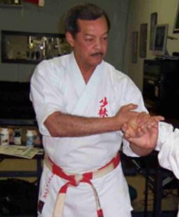 <br>Bill Hayes - Shobayashi Ryu