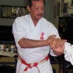 Bill Hayes Shobayashi Ryu